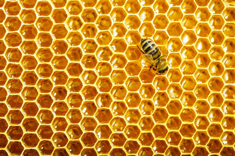Honeycomb-Hexagon